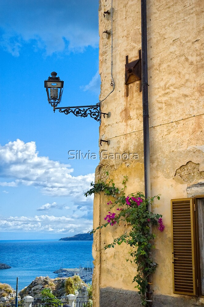 House with bougainvillea, street lamp and distant sea by Silvia Ganora