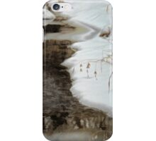 Snow and Seeds iPhone Case/Skin
