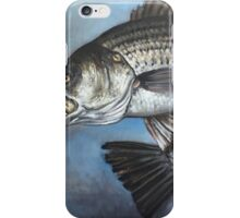 Striped Bass Chasing Bunker iPhone Case/Skin