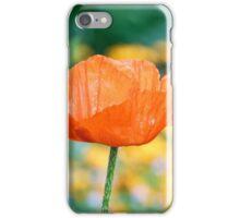 Single Orange Poppy iPhone Case/Skin