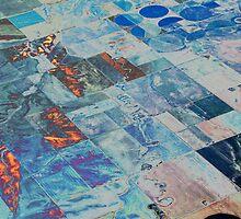 terra firma by Paul Kavsak