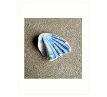 Just a Shell. Art Print