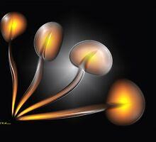 Bulbs by George Lenz