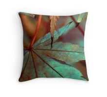 Colors of color Throw Pillow