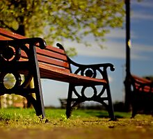 Riverside Bench photograph in Colour by Jason M Rogers