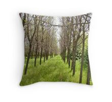 ..And It Goes On...and on..... ~For Trueblvr~ Throw Pillow
