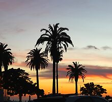 Santa Monica by jehnner