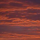 AZ. SUNSET 1 by Bonnie Pelton