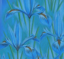 Blue dwarf irises Sticker