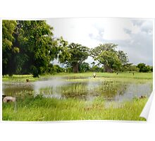 Rice Field, Poster