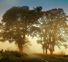 Twilight Guardians. Misty Roads of Scotland by JennyRainbow