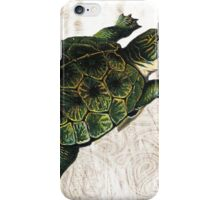 Green Turtle iPhone Case/Skin