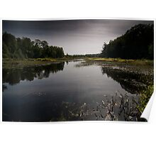 Wading Ripple, Muskoka Lakes, Ontario Poster