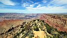 Panoramic view on Grant Canyon  by LudaNayvelt