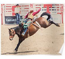 Calgary Stampede 2009, #41, Canada Poster