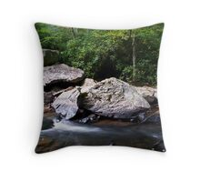 Glade Creek Throw Pillow
