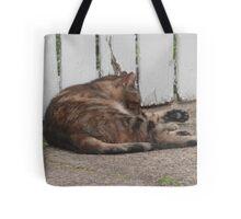 West Philadelphia catitude Tote Bag