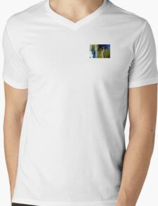 aire valley Mens V-Neck T-Shirt