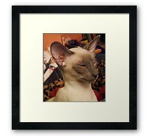 Excellent, my minions Framed Print