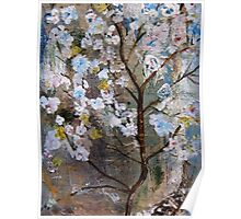 Cherry Blossoms Pink and Blue Poster