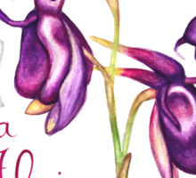 Flying Duck Orchid (Wild Orchid Series I) Sticker