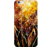 FireWorks.... iPhone Case/Skin