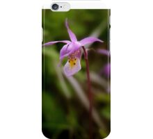 Calypso Orchid in the Bear Paw Mountains iPhone Case/Skin