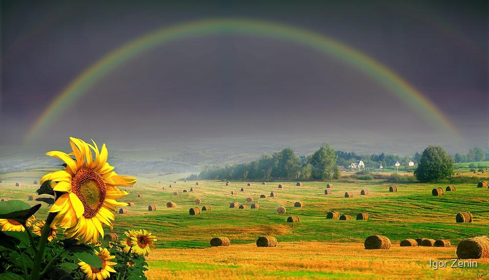 Countryside by Igor Zenin