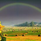 Countryside by Igor Zenin