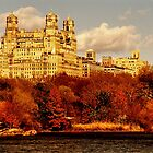 MHN from Central Park  by micpowell