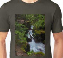 Avalanche Gorge, Glacier Park, Montana Unisex T-Shirt