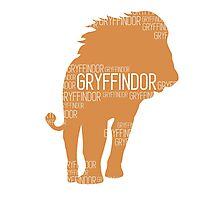 Gryffindor Photographic Print