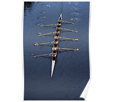 Mens 8 rowing Poster