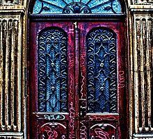 Abandoned Wooden Door Fine Art Print by stockfineart