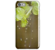 The Itsy Bitsy Spiders Crawled Up iPhone Case/Skin