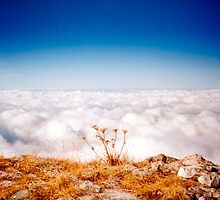 Sea Of Clouds by Pascal Inard