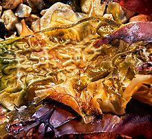 Colourful Seaweed - Lyme Regis by Susie Peek