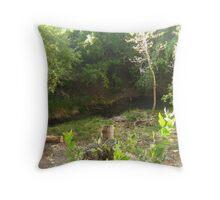 My Little Creek Throw Pillow
