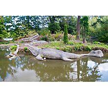 The Original Durassic Park: #6 Photographic Print