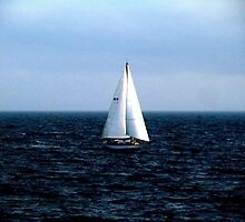 A Sailboat  by Pearle