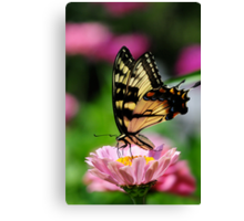 A FLOWER ROMANCE -V-  Canvas Print