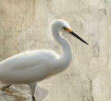Snowy Egret in Grunge Sticker