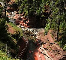 Red Rock Canyon - Waterton by Vickie Emms