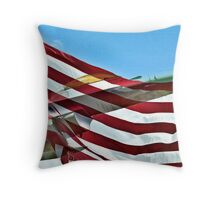Flying Freedom Throw Pillow