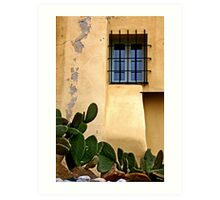 The cactus and the window Art Print