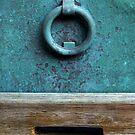 The ring by Barbara  Corvino