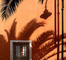 The lamp's shadow by Barbara  Corvino