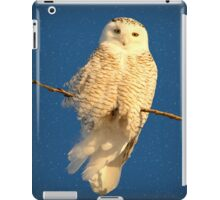 Guardian Angel (snowing) iPad Case/Skin