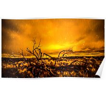 Fiery Desert Sunset Poster