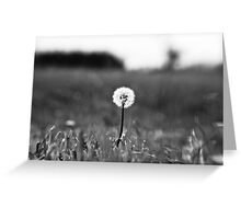 I've lost my focus Greeting Card